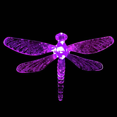 Digital Art - Purple Dragonfly by Sarah Jean