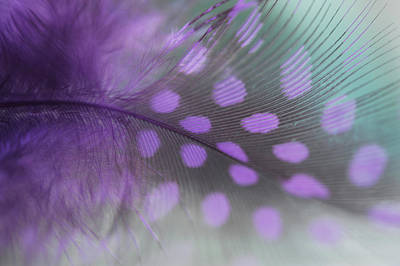 Photograph - Purple Dream by Jenny Rainbow