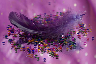Photograph - Purple Fairy Feather by Pixie Copley