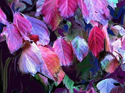 Photograph - Purple Fall Leaves by Ian  MacDonald