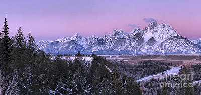 Photograph - Purple Fall Teton Morning by Adam Jewell