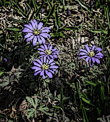 Photograph - Purple Floral  by David Lane