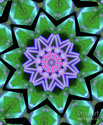 Photograph - Purple Flower Prism by Shirley Moravec