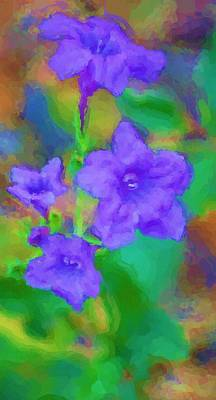 Photograph - Purple Flowers 102310 by David Lane