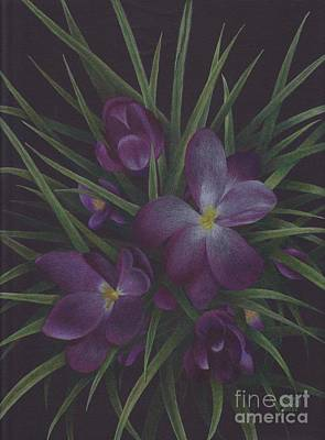 Drawing - Purple Flowers by Lisa Bliss Rush