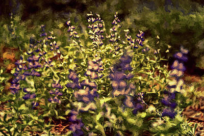 Photograph - Purple Flowers by Maria Coulson
