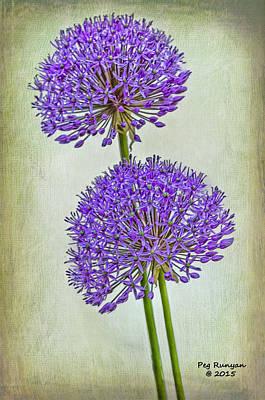 Photograph - Purple Flowers by Peg Runyan
