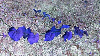 Photograph - Purple Garland by Cathy Dee Janes