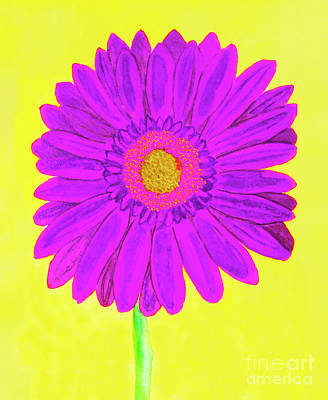 Purple  Gerbera On Yellow, Watercolor Art Print