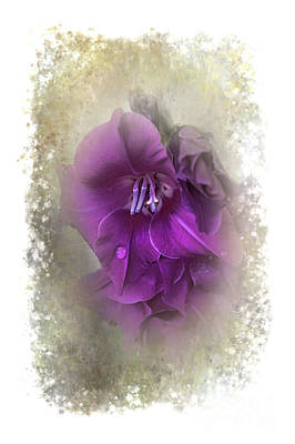 Photograph - Purple Gladiolas by Judy Hall-Folde