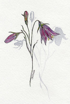 Painting - Purple Harebell by Julie Maas