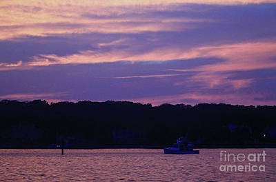Photograph - Purple Haze by Mary Haber