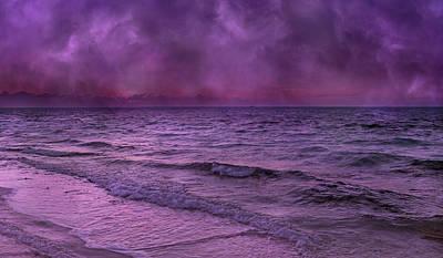 Purple Heart Print by Betsy Knapp