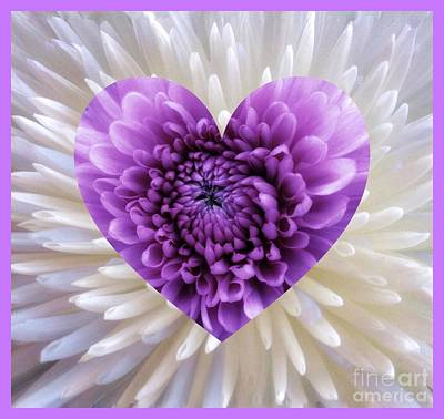 Photograph - Purple Heart by Joan-Violet Stretch