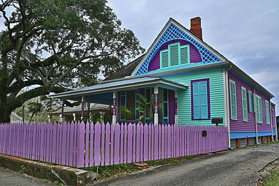 Photograph - Purple House by Ronald Olivier