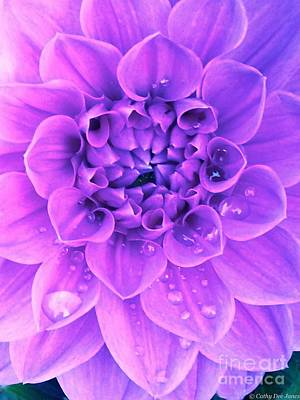 Photograph - Purple Too by Cathy Dee Janes