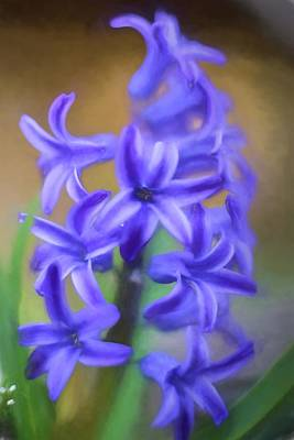 Purple Hyacinths Digital Art Art Print by Terry DeLuco