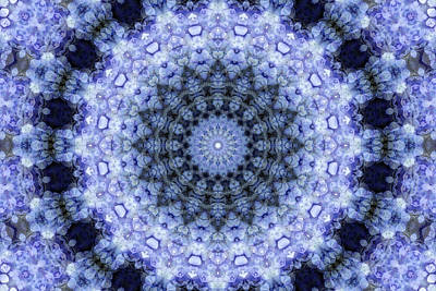 Digital Art - Purple Hydrangea Mandala by Janusian Gallery