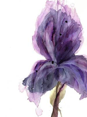 Purple Iris Art Print by Dawn Derman