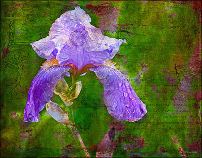 Photograph - Purple Iris In Rustic French Love by Anna Louise