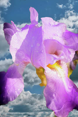 Digital Art - Purple Iris In The Sky by Rusty R Smith