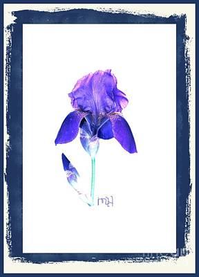 Photograph - Purple Iris by Marsha Heiken