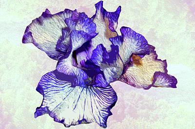 Photograph - Purple Iris by Michelle McPhillips