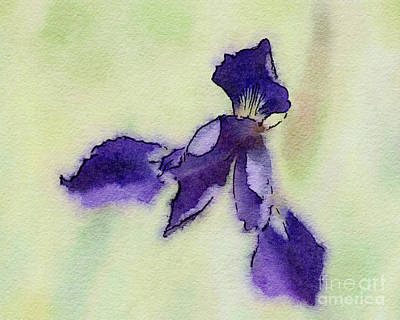 Photograph - Purple Iris Petals by Kerri Farley
