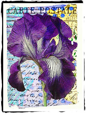 Digital Art - Purple Iris by Tina LeCour