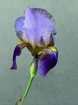 Mixed Media - Purple Iris With Bud by I'ina Van Lawick
