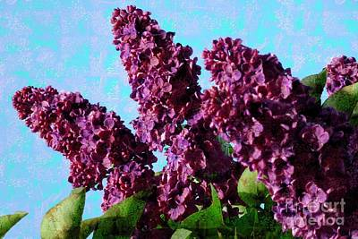 Photograph - Purple Lilac 2 by Jean Bernard Roussilhe
