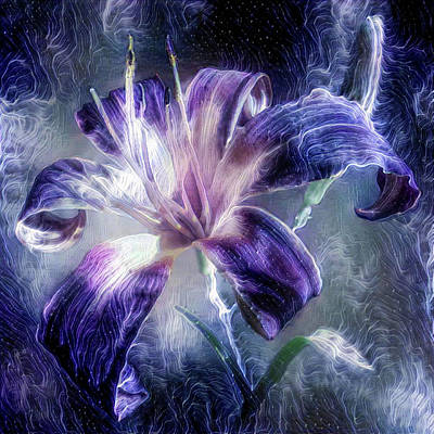Mixed Media - Purple Lily Flower by Lilia D