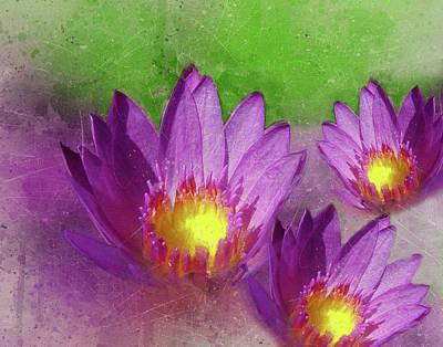 Photograph - Purple Lotus Flower by Judi Saunders