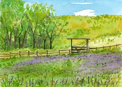 Painting - Purple Lupines Pasture by Cathie Richardson