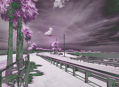 Purple Haze Print by Jim Cook
