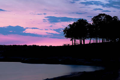 Photograph - Purple Majesty by Gregory Ballos