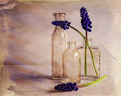Art Print featuring the photograph Purple by Mary Hone