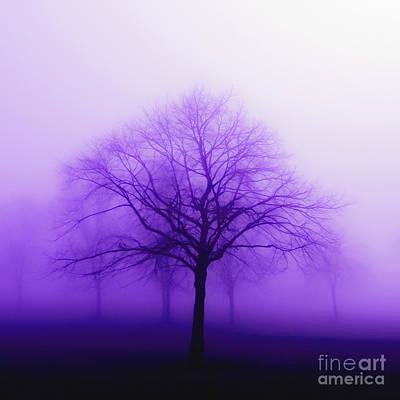 Purple Mist Print by Kathy Franklin