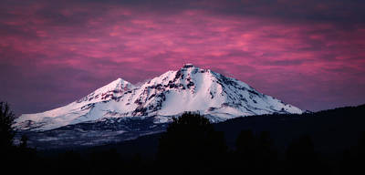 Photograph - Purple Mountain Majesty by Cat Connor