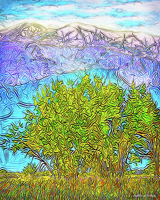 Digital Art - Purple Mountain Plains - Boulder County Colorado by Joel Bruce Wallach