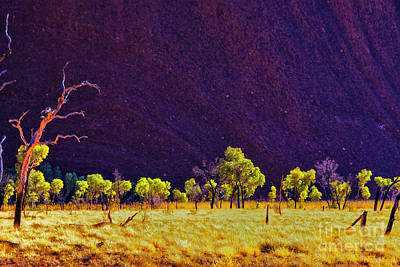 Photograph - Purple Mountain by Rick Bragan