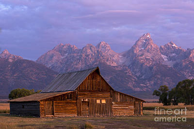 Photograph - Purple Mountains Majesty by Deby Dixon