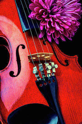 Fiddle Photograph - Purple Mum And Violin by Garry Gay