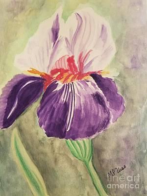 Painting - Purple N White Iris by Maria Urso