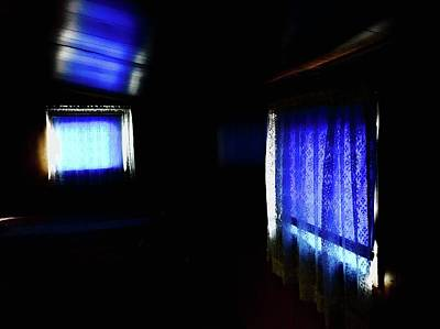 Photograph - Purple On Blue  by Brian Sereda
