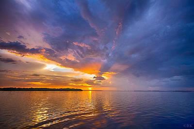 Shark Art - Purple Orange Dream Sunset by Ronald Kotinsky