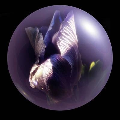 Digital Art - Purple Orb Iris by Richard Ricci