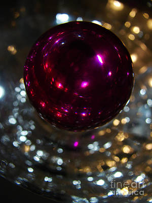 Photograph - Purple Orb by Mark Holbrook