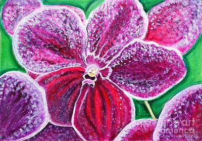 Painting - Purple Orchid Bloom by Manjiri Kanvinde