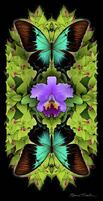 Photograph - Purple Orchid by Bruce Frank